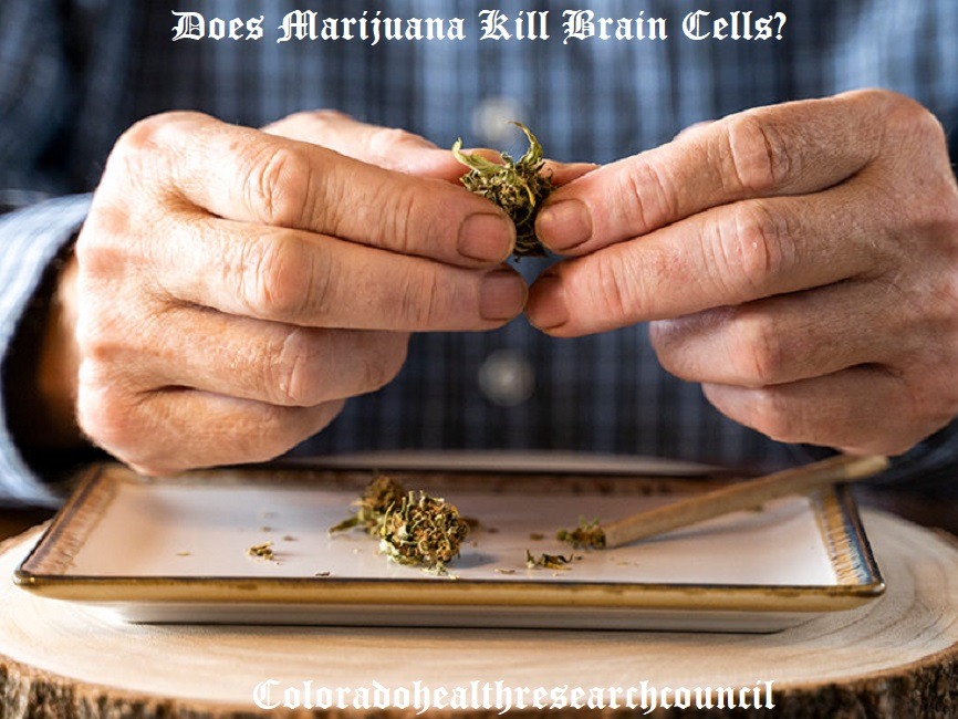 does weed kill brain cells