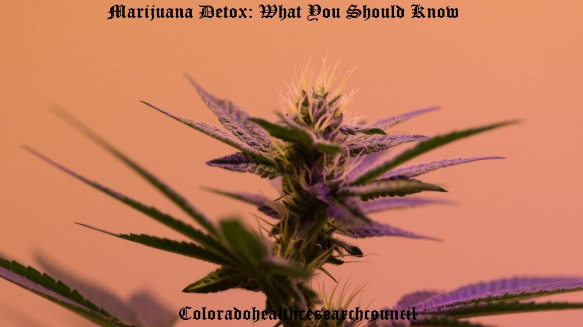 weed detox