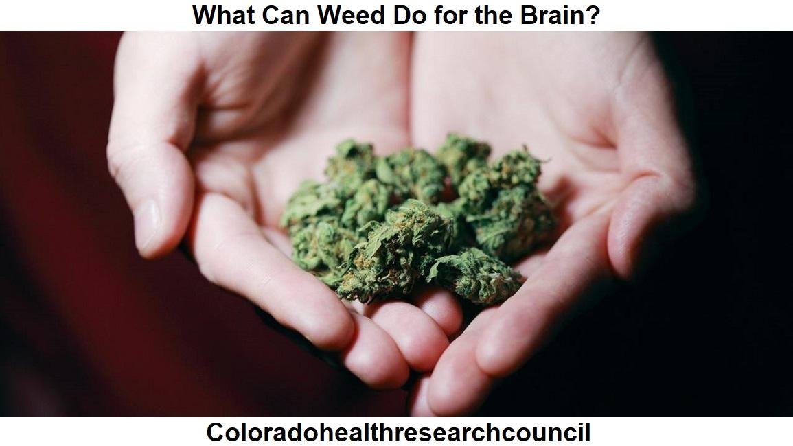 cannabis and brain cells