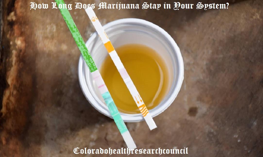 thc in urine